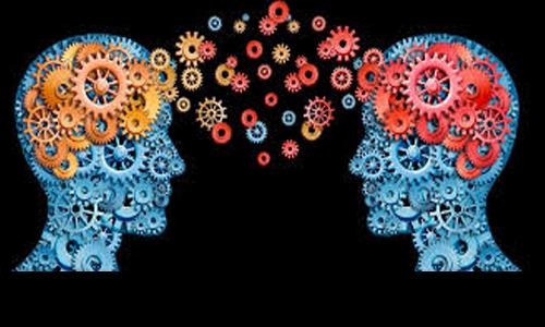 cómo comprendemos la información