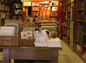 librería de viejo 1