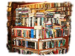 librería de viejo 2